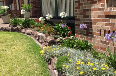 Glenda's gardens in New Lambton Heights were a weed infested mess. After removing plants and all of the weed infested soil, new sun tolerant, colourful plants have made this place look very cheery