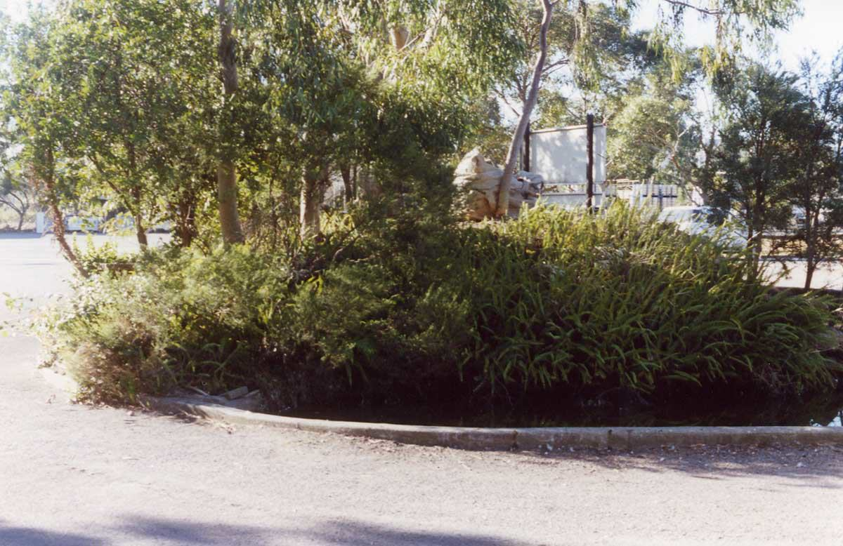 cardiff industrial garden in lake macquriae