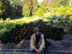 the gardener in melbourne botanic gardens